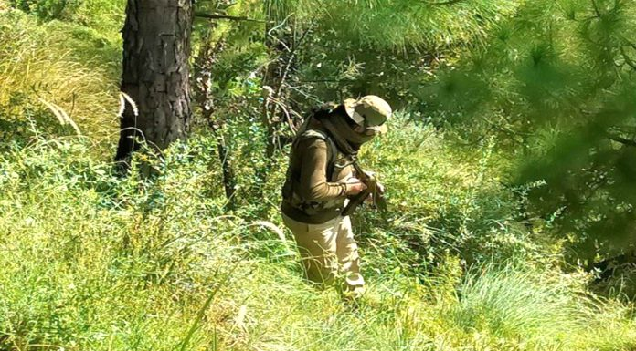 Kashmir Army in preparation for a major operation for terrorists hiding in the forest evacuated the area
