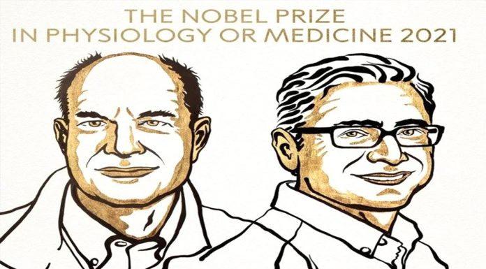 They got the Nobel Prize in Medicine 2021 will get this award jointly